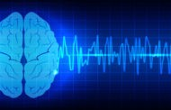 Chiropractic Care and Brain Function